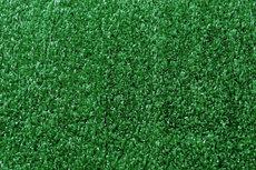ecarpets Prato green