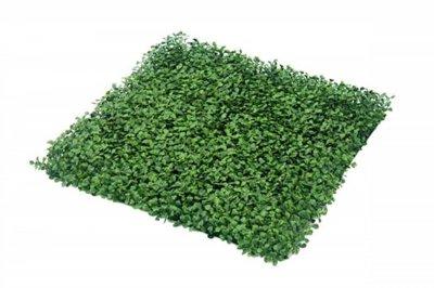 ecarpets Συνθετικό πάνελ φυλλωσιάς κισσός πολύ λεπτός 50x50