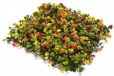 ecarpets Συνθετικό πάνελ φυλλωσιάς κισσός πολύχρωμος 50x50