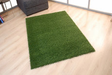 ecarpets Outdoor shaggy